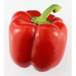 1kg de Poivron rouge